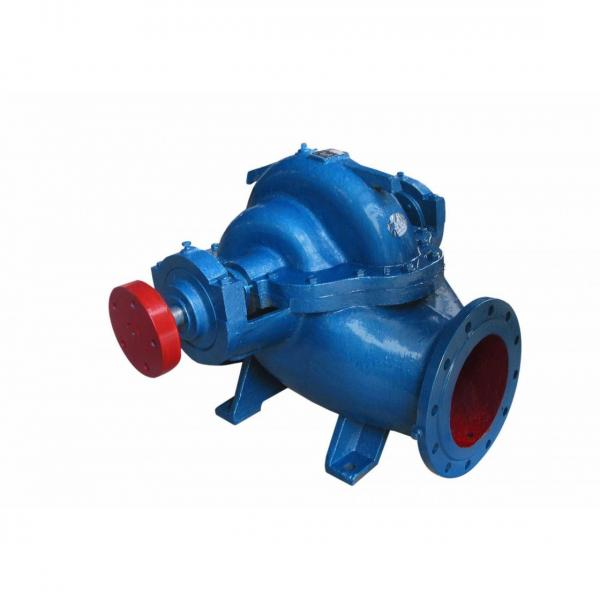 Vickers PV028R1K1AYNMMC+PGP511A0110CA1 Piston Pump PV Series #2 image