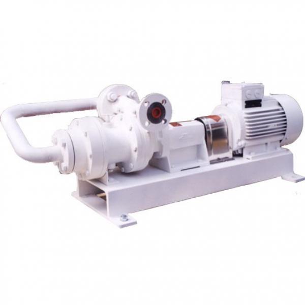 Vickers PV020R1K1T1NUPD+PVAPVV11N20 Piston Pump PV Series #2 image