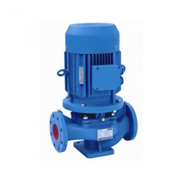 Vickers PVH098R13AJ30E252010001A D1AE01 Piston pump PVH #1 image